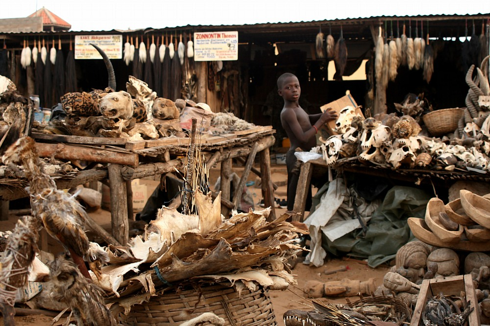 Selling Sorcery: A Visit to Lomé's Notorious Voodoo Market post image