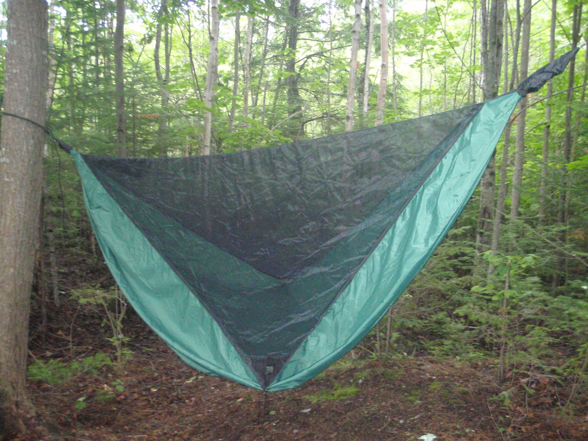 and tarps nest shelter tents eno bivy hammocks combo hammock eagles bivys in