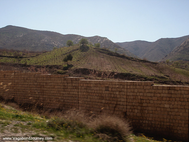 photo of farm fields northern iraq