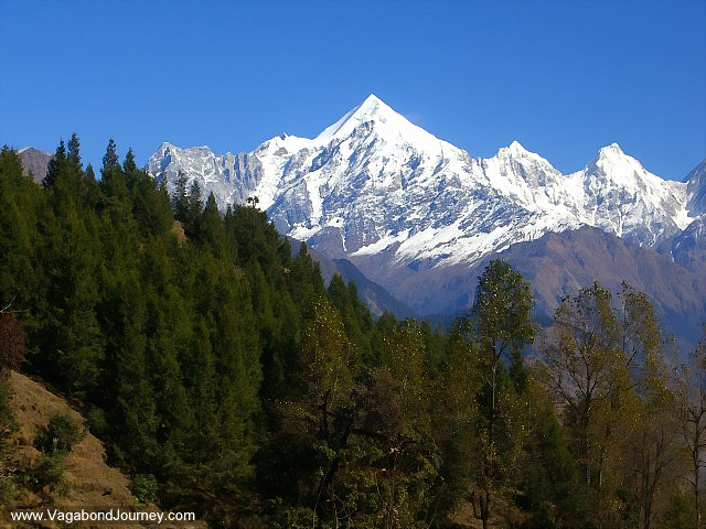 Capped peaks of the himalayas in front of the forest hills in india