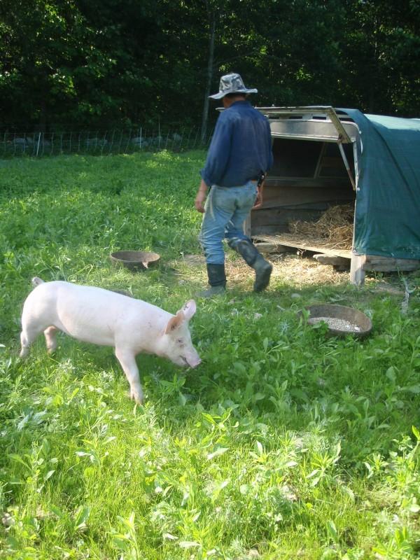 Farm to travel around the world
