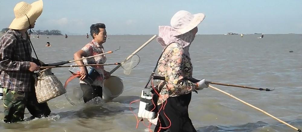 Watch: Chinese Electrofishing post image