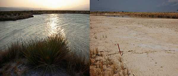 Before and after photo of Laguna Intermedia at Cuatro Cienegas Basin