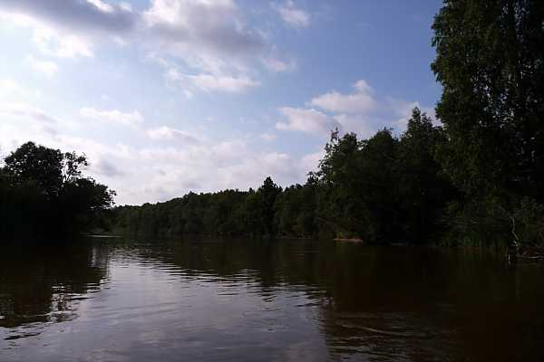 Mother River Main 2_DCE