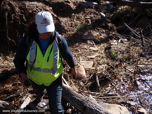 Archaeologist surveying near Mogollon Rim in Arizona