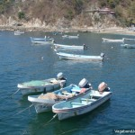 Fishing Boats Anchored