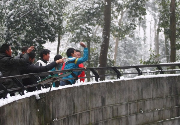 chinese-snowball-fight