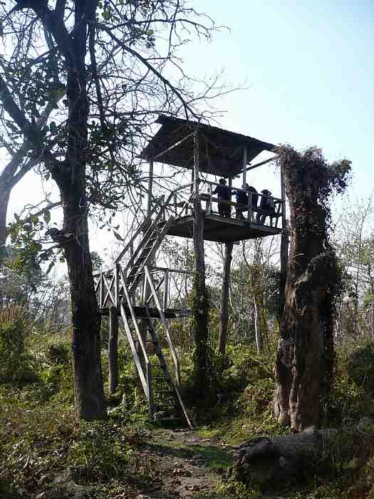 chitwan-park-nepal-2