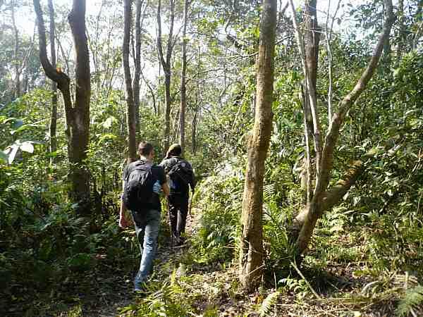 chitwan-park-nepal-3
