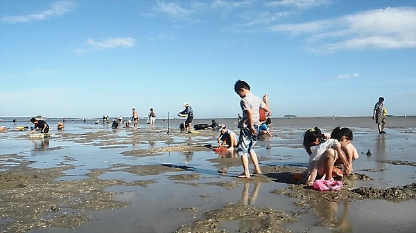 clam fishing in china (2)