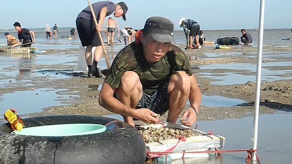 clam fishing in china (4)
