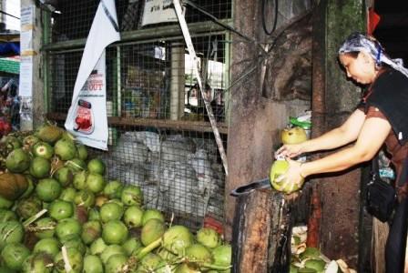 Coconuts in Manila