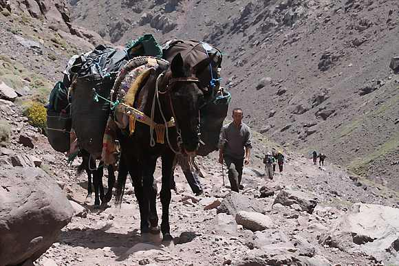 hiking-toubkal