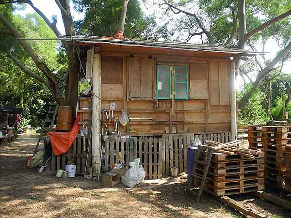 hippy living in the woods house