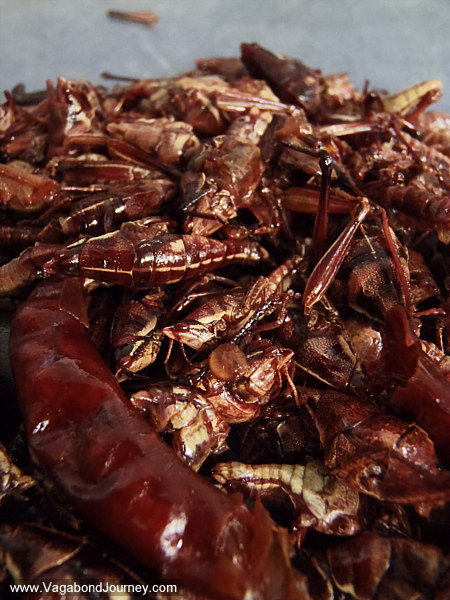 Mexican food grasshoppers