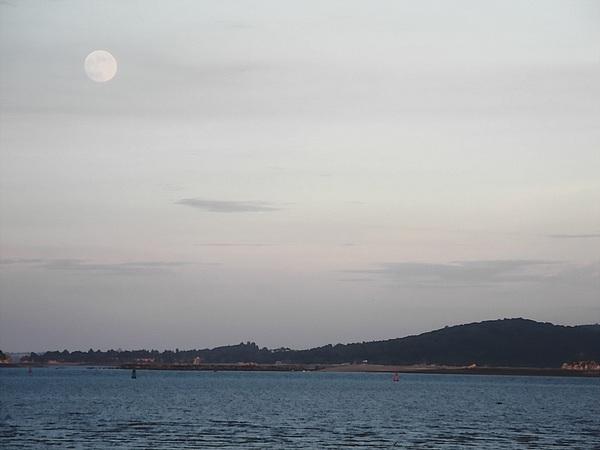 mid-autumn-moon