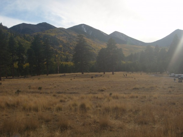 Lockett Meadow Arizona
