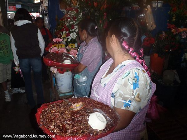 Oaxaca market grasshoppers
