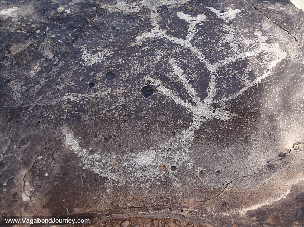 Petroglyph Southwest USA