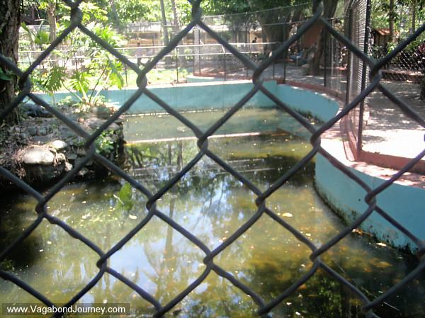 San Salvador zoo Precambrian Era exhibit