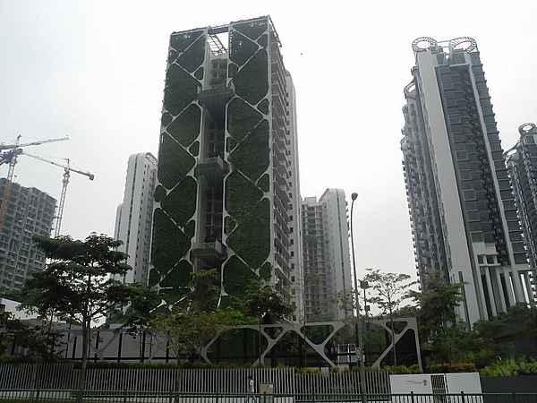 skyrise greenery singapore 5