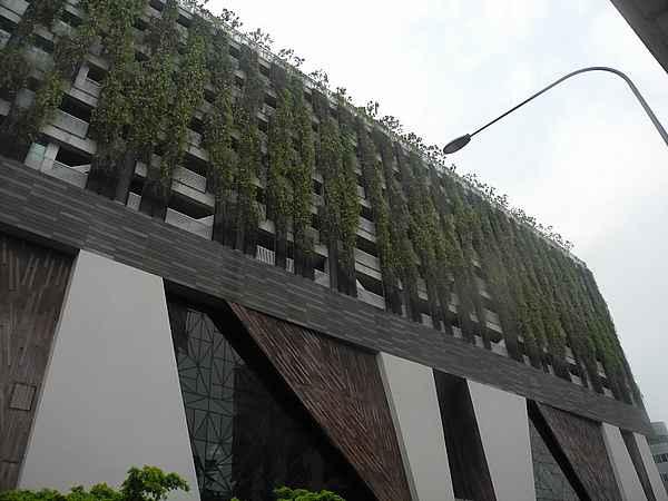 skyrise greenery singapore 8